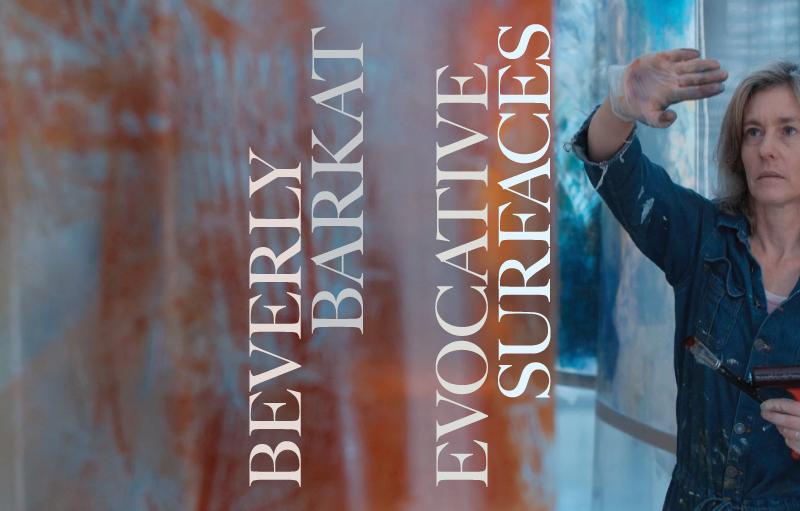 Evocative Surfaces Beverly Barkat